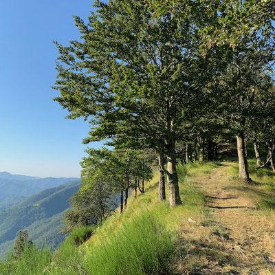 Erster Ausblick oberhalb vom Passo della Forcella