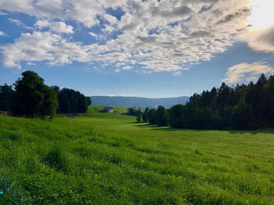 Morgenstimmung nahe Breitenberg