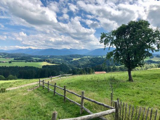 schöner Ausblick zu den Bergen