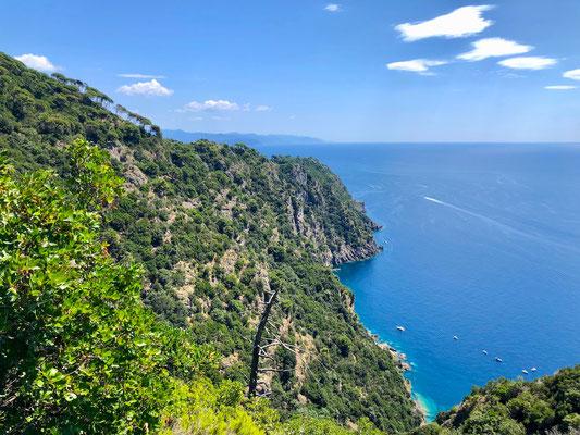 Portofino, Liguria, Berghuhn