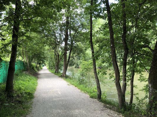 schattiger Abschnitt auf dem Ammer-Amper Radweg
