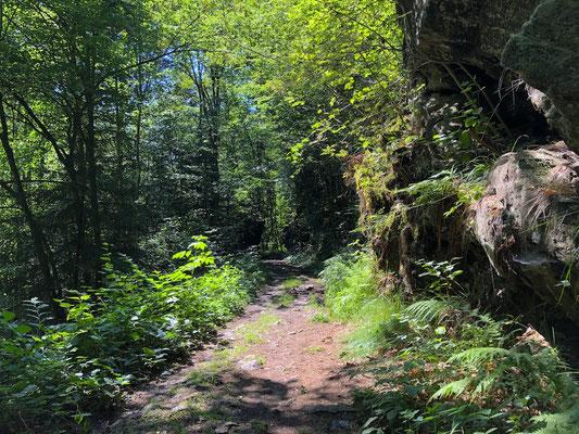 entlang der Erlau