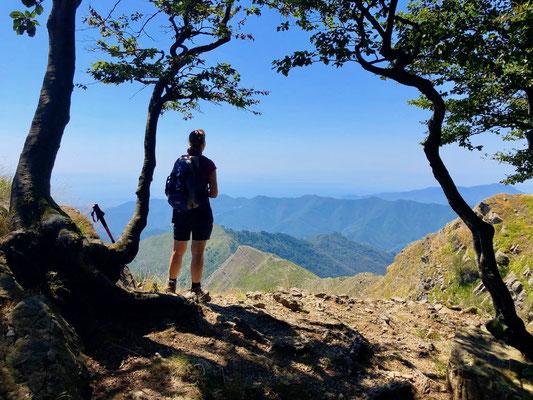Monte Ramacetto, Liguria, Berghuhn