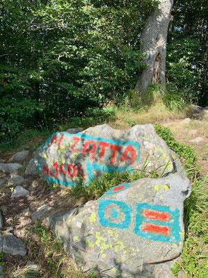 Hauptgipfel des Monte Zatta - ein Gipfelkreuz gibt es nicht