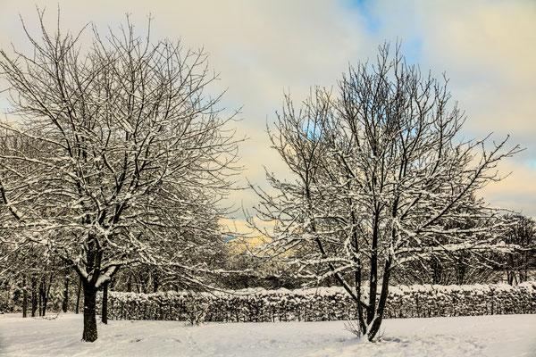Taalblick im Winter