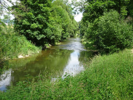 Donau, ca. 30 km unterhalb der Quelle