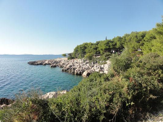 Küste bei Primošten