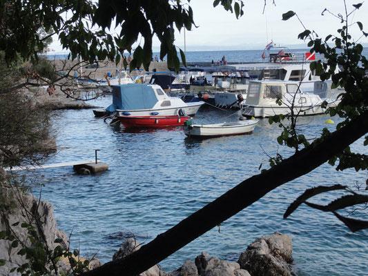 Hafen von Medveja