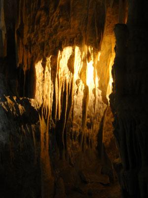 Höhle von Postojna, faszinierend schöne Stalaktiten
