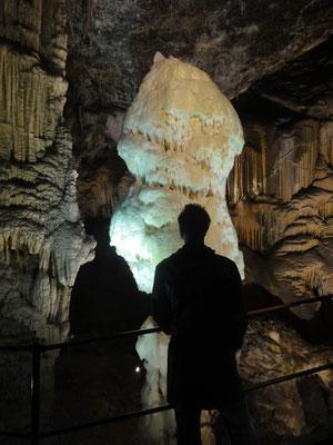 Höhle von Postojna, der schönste aller Stalagmiten