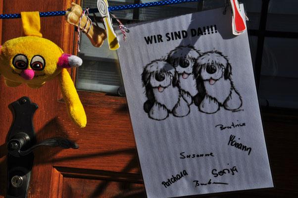 Auch Smilla`s Hundeschulgruppe freut sich! Gelungene Überraschung - lieben Dank!!!