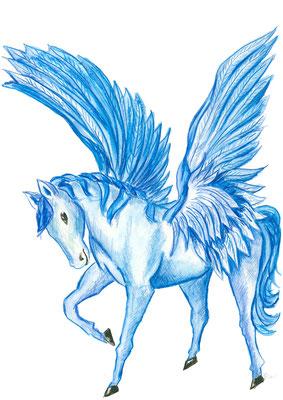 Pegasus klein