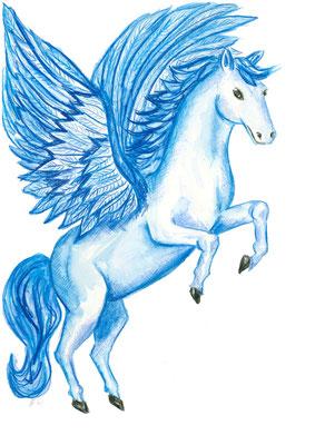 Pegasus groß