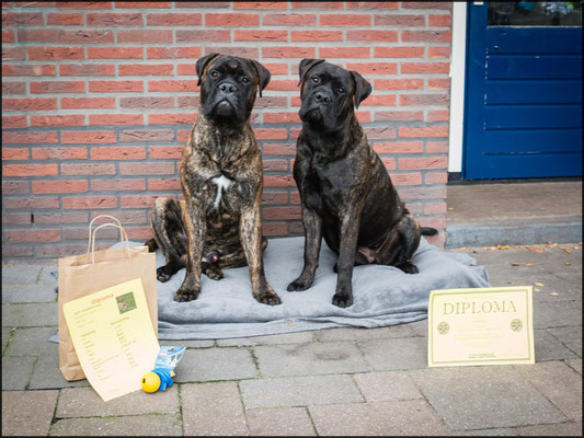 Sjors en Doris geslaagd voor puppy cursus