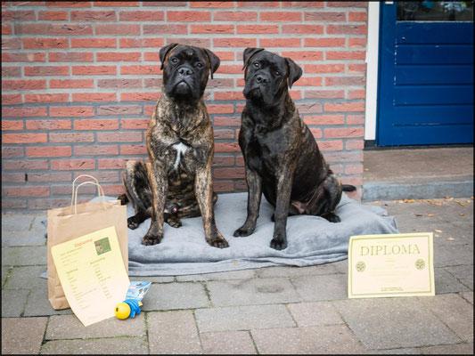 broer Sjors en Doris geslaagd voor puppy cursus