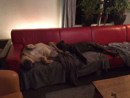 Ruby en Doris slapen
