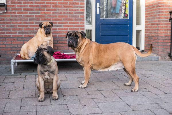 Roos met kleindochter Summer en op achtergrond Ruby. 2 Januari 2019.