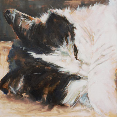 Snoezepoes 'Snowy'  portret commission   80x80cm