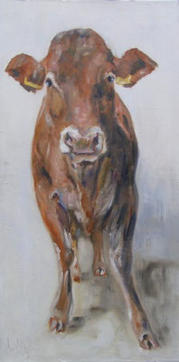 Limousin | oil on linen | 50x100cm