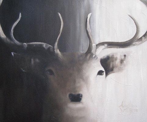 Hert/Red deer  | oil on linen | 120x100cm