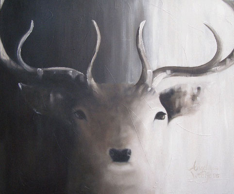 Hert/Red deer  | oil on linen | 120x100cm