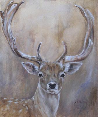 Dambok/Fallow deer| oil on linen | 100x120cm