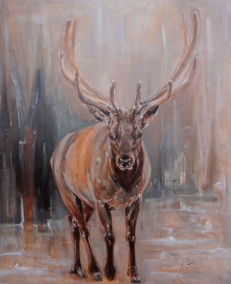 Wapiti | oil on linen | 100x120cm