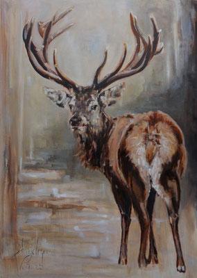 Edelhert/Red deer | oil on linen | 100x140cm