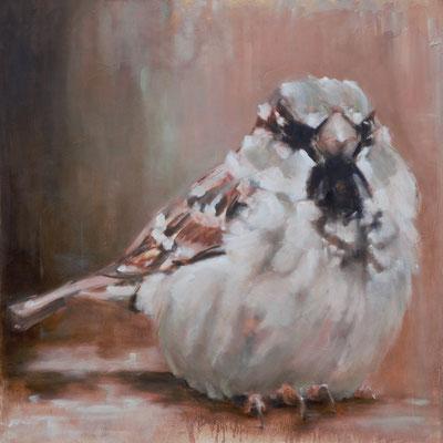 Sparrow | oil on linen | 80x80cm