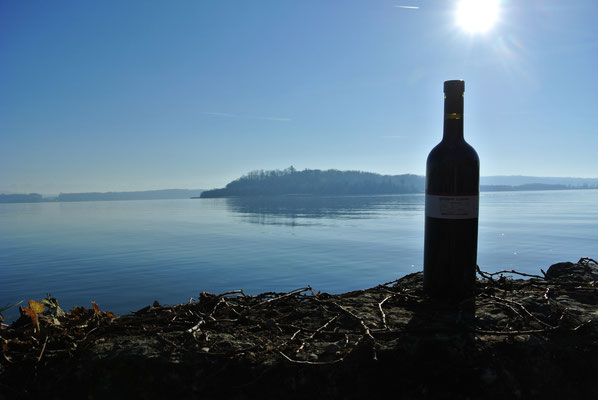Der Wein mit der besten Aussicht
