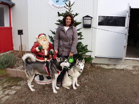 Ajak wollte eigentlich nicht auf dieses Foto; mit dem Weihnachtsmann zusammen, aber bitte, als Rüde!