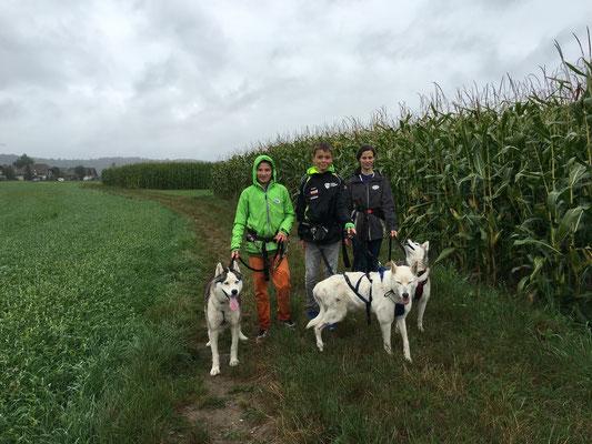 Yukon mit Noah, Snow mit Fabio und Ice mit Florina, Begleitmensch Doghändlerin Nicole.