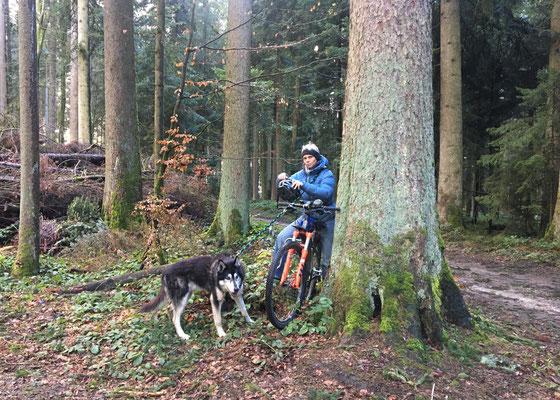 bis man wieder zu dem Fahrrad traf, das an einen Baum gelehnt auf uns wartete;