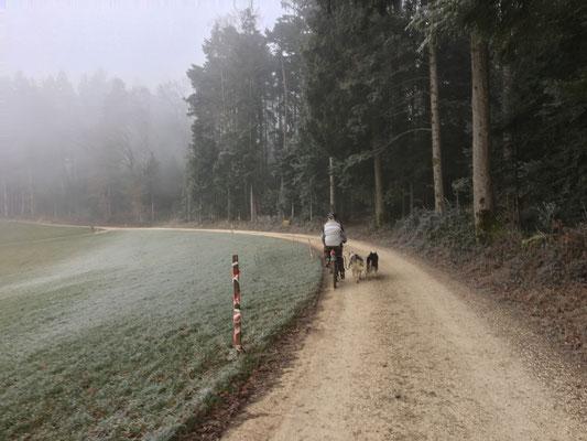 In flottem Trab auf dem Trail, in Richtung erstem Streckenposten...