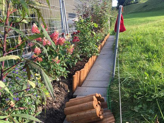 Einfassung der Sträucherrabatte, damit mehr Erde aufgefüllt werden kann und das Wasser die Pflanzen länger feucht hält.