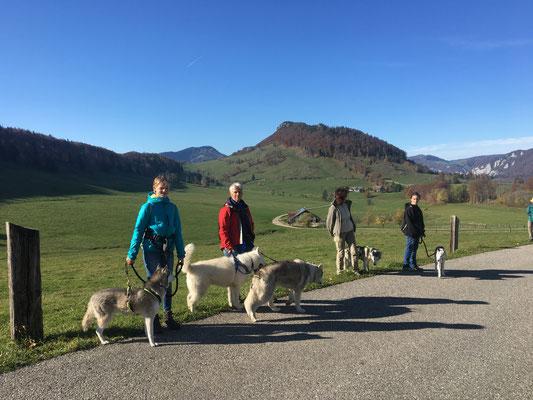 Jurawanderweg Schmidenmatt-Hofbergli