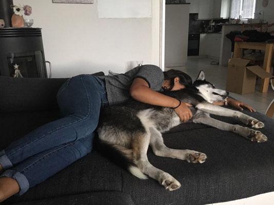 Und dann mit Frauchen auf dem Sofa schmusen, bis man träumend miteinander einschläft...