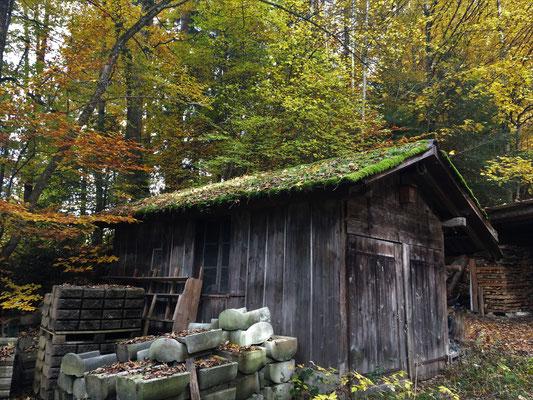 einsame Trapperhütte