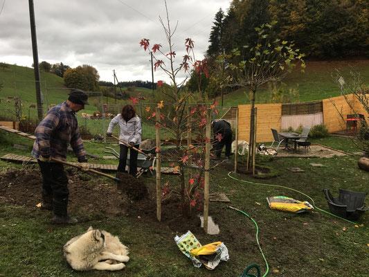 Der Freundschaftsbaum wird gepflanzt 29.10.2018