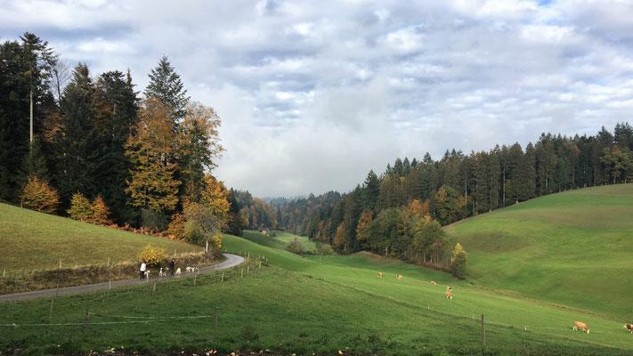 Moosbach, Ritzlimoos