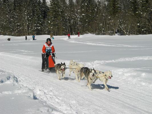 Wie hier am Rennen in Kandersteg, wo wir mit Snow`s Verdienst auf Platz 6 von 9 waren.