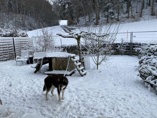 16 Jahre und 80 Tage; das ist Schnee von - heute