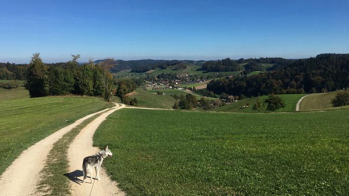 Ursenbach