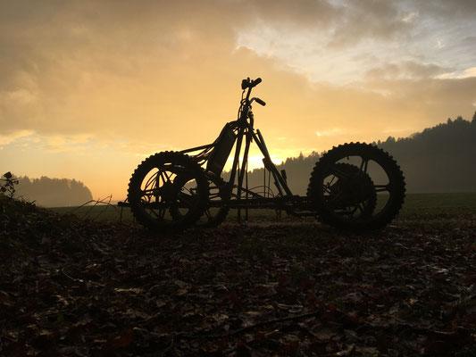 Der Tag geht zu Ende mit einer wunderschönen Stimmung über Feld und Wald, und schier berstenden Herzen vor lauter Glück!