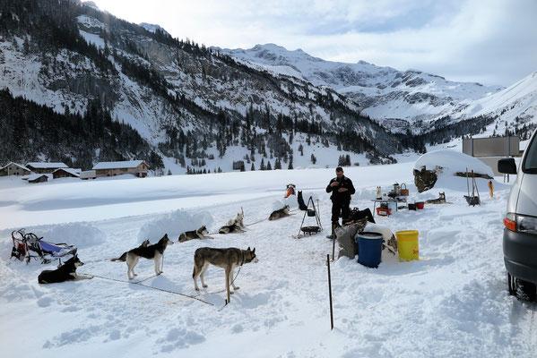 Im Camp auf dem Urnerboden, Amarok mit seinen 13 Rennkumpels
