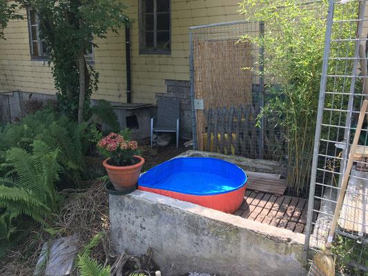 Roste wurden verlegt, damit man nicht mit schmutzigen Pfoten ins Wasser steigt. (eine hervorragende Idee vom schlauen Yukon)