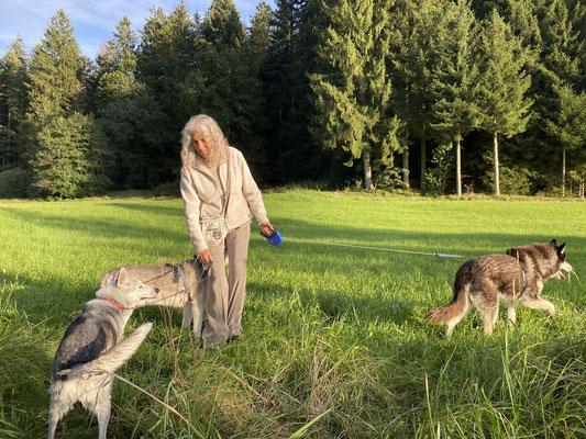 28.9.2021; ich führe Evelyn durch unser Bärenland, zeige ihr den Rotbach,  unser Badeplatz, die schönen Waldgräblein und das blumenüberwachsene Wunderhäuschen. --- Weisst du noch, Evelyn?