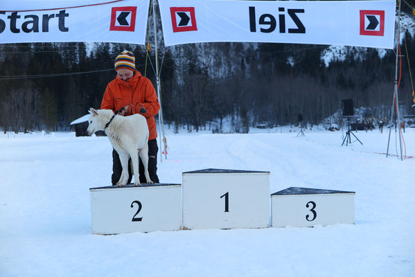 Aber Snow gab alles was er drauf hatte, wie immer, und fuhr uns auf den zweiten Platz.
