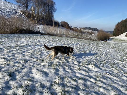 16 Jahre, 1 Monat und 1 Tag; und immer noch freudig durch das schönste Element, den Schnee