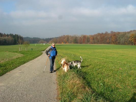 Nordic-Walking mit und ohne Bauchgurt